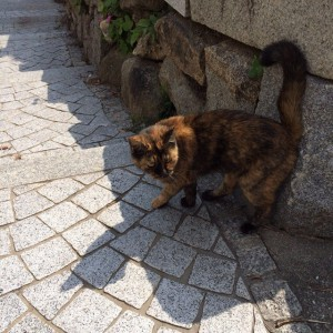 hiroshima2014_0927-28_03